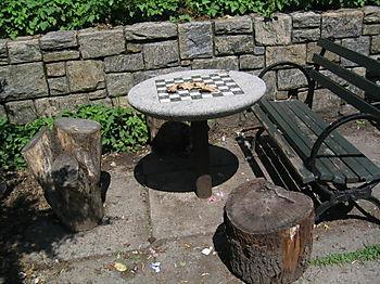 Rose garden chess 6-18