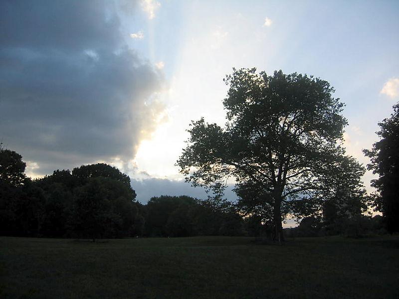 Sunset Long meadow 7-21