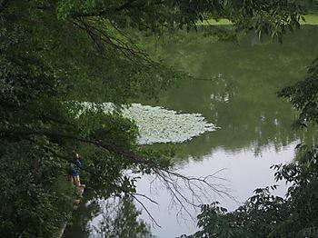 Fishing, Terrace Bridge 1 7-28
