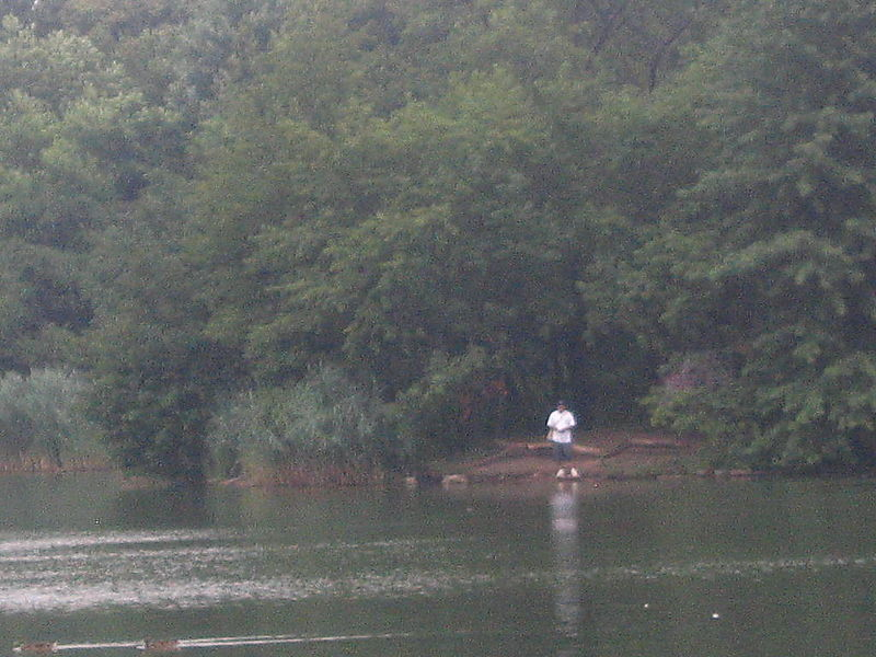 Lakeside fisherman
