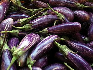 Little eggplant 7-26