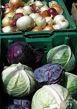 Onion&cabbage 8-09