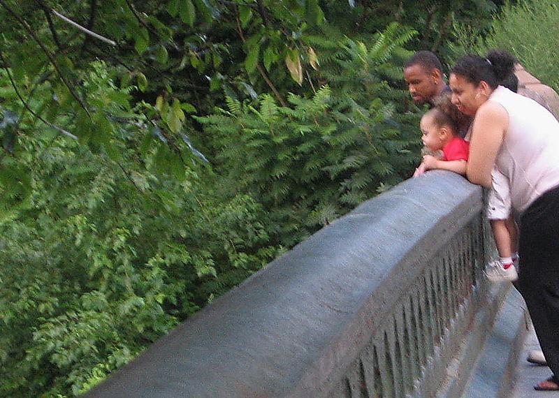 Terrace bridge 7-28