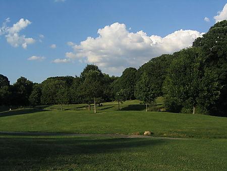 Long Meadow LS 8-01