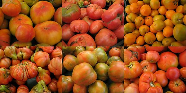 Heirloom tomato quilt 8-16