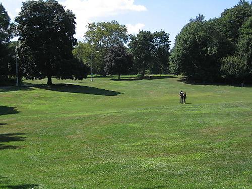 Nellie's Lawn 8-12