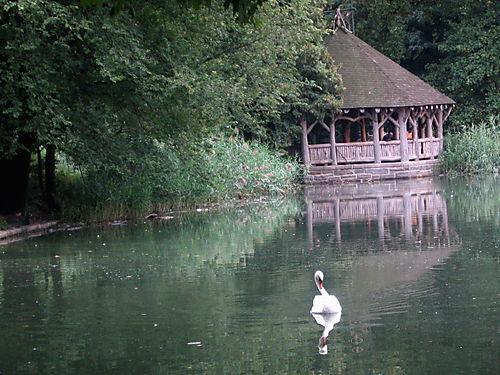 Swan&shelter 9-09
