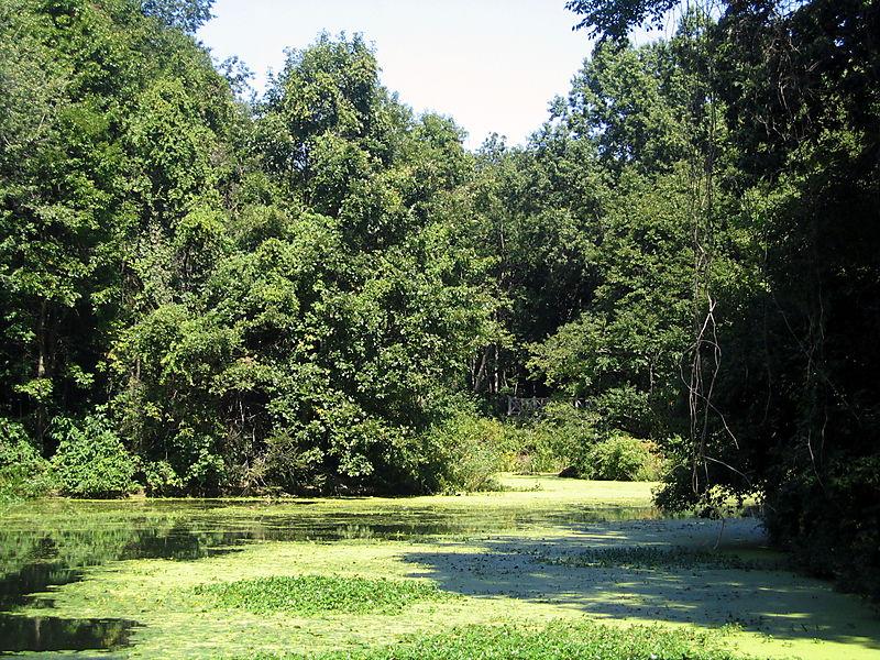 Lullwalk lake 9-21