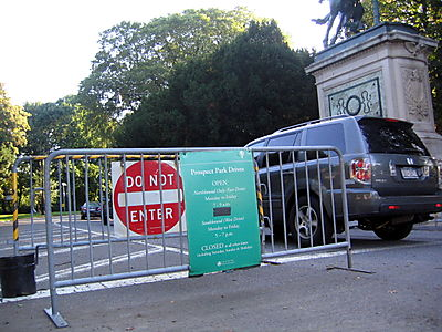 Cars in park 10-02