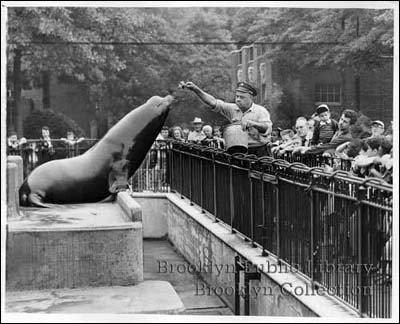 Prospect Park Zoo BPL