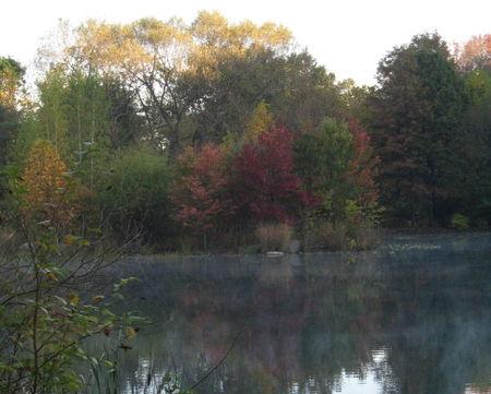 Lake fog 10-24