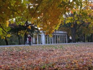 Peristyle foliage 11-02