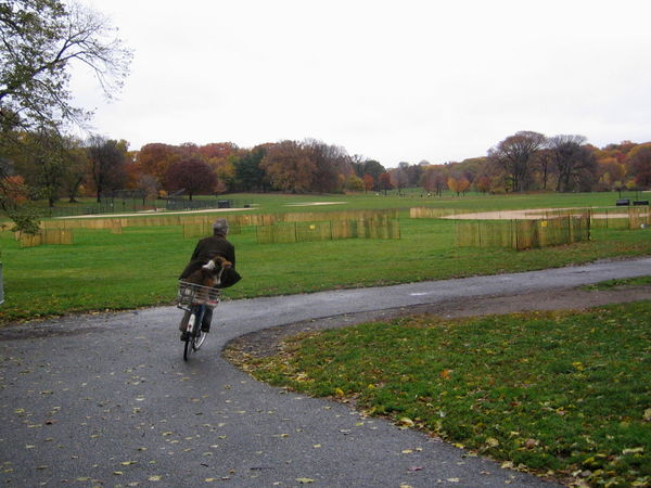 Collie bike 11-06