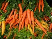 Veg carrots 11-15