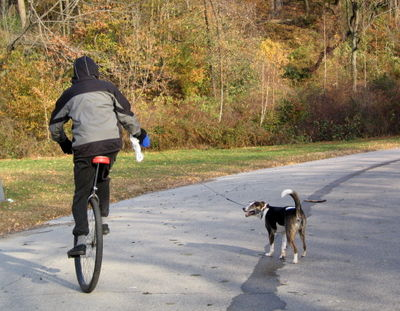 Unicyclist and dog 11-21