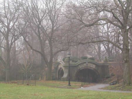 Meadowport Arch in mist 12-27