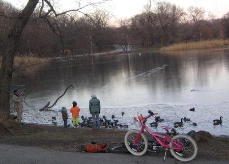 Christmas bike 12-25
