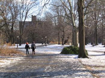 Cold walk 1-12