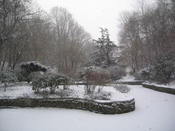 Vale pond snow 1-15