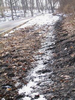 Muddy bridle path 1-23