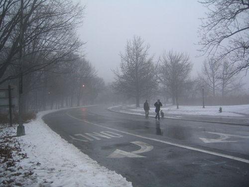 Fog joggers 1-28