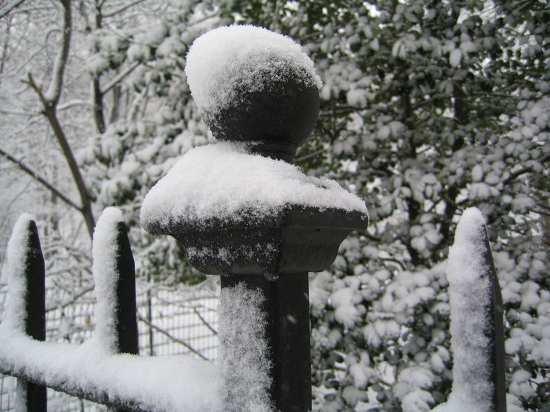 Snowcapped fence 2-03