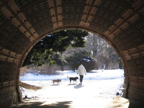 Cleft Ridge Span doggies 2-05