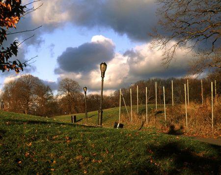 MR long meadow autumn