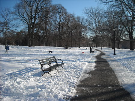 Clear path & bench