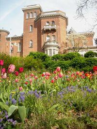 Litchfield villa garden 2