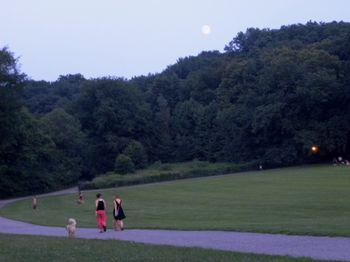 Moonrise 8-04