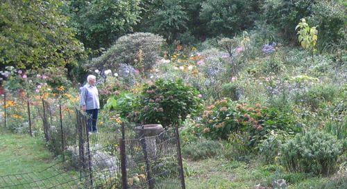 Carmen & garden
