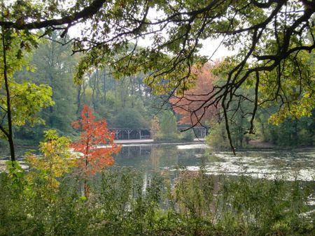 Lullwater autumn 10-21