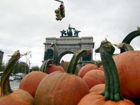 GAP pumpkins 10-31