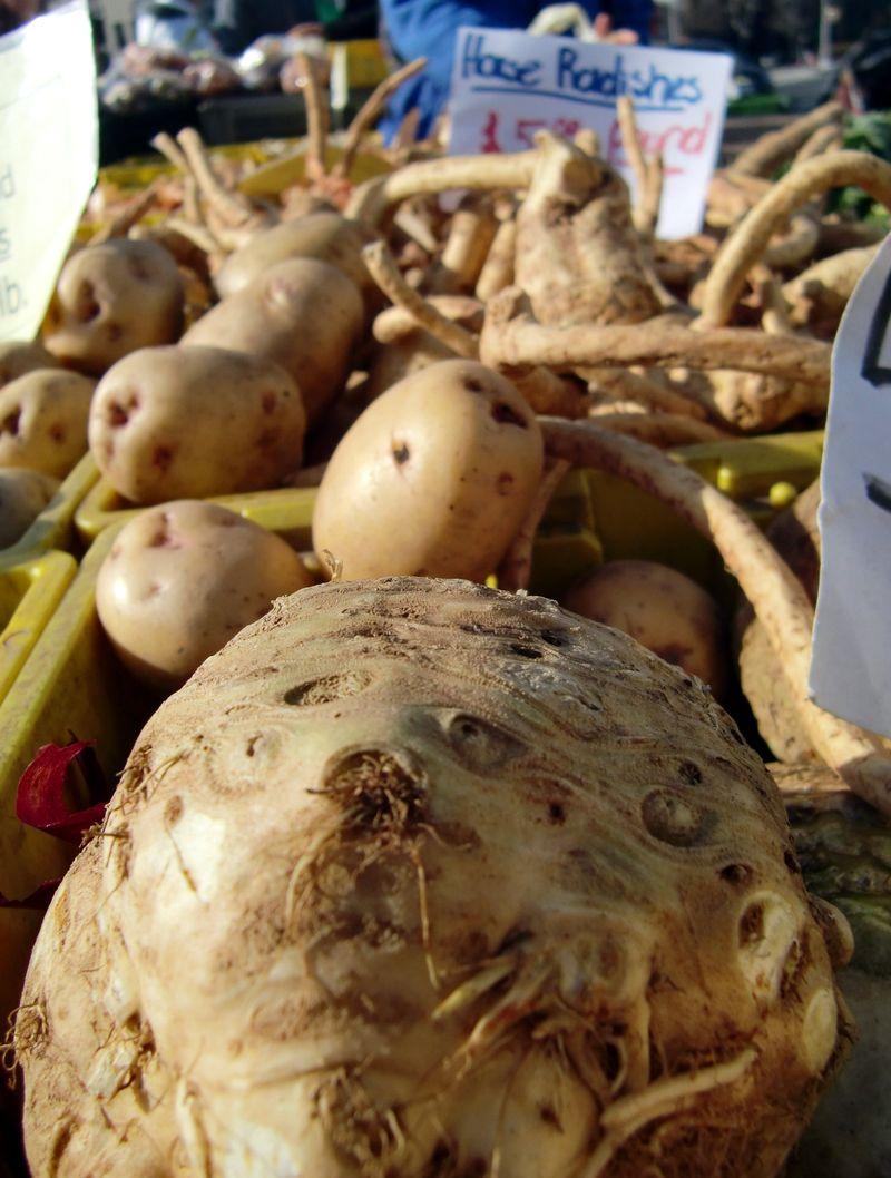 Root vegetables 1-16