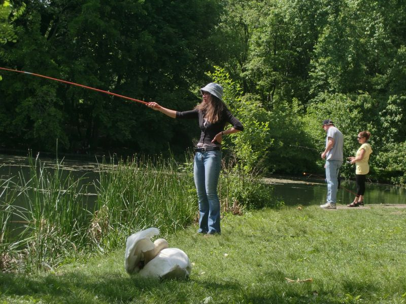 Fishing with swan 5-16