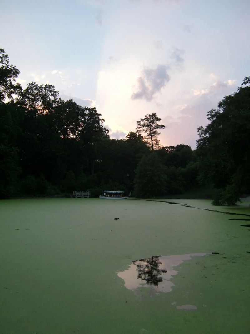 Green lake sunset 6-26