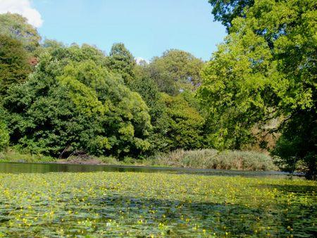 Lilly lake 10-7-10