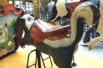 Carousel skunk