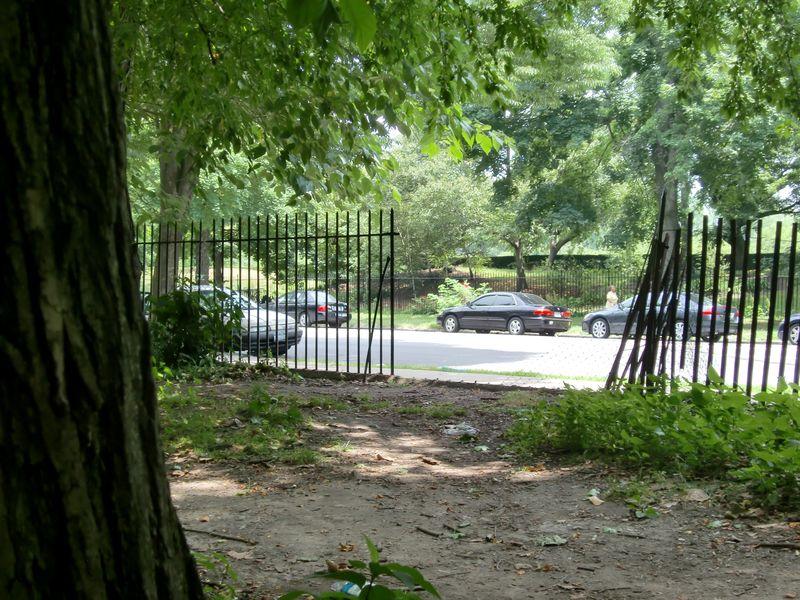 Broken fence flatbush 6-28