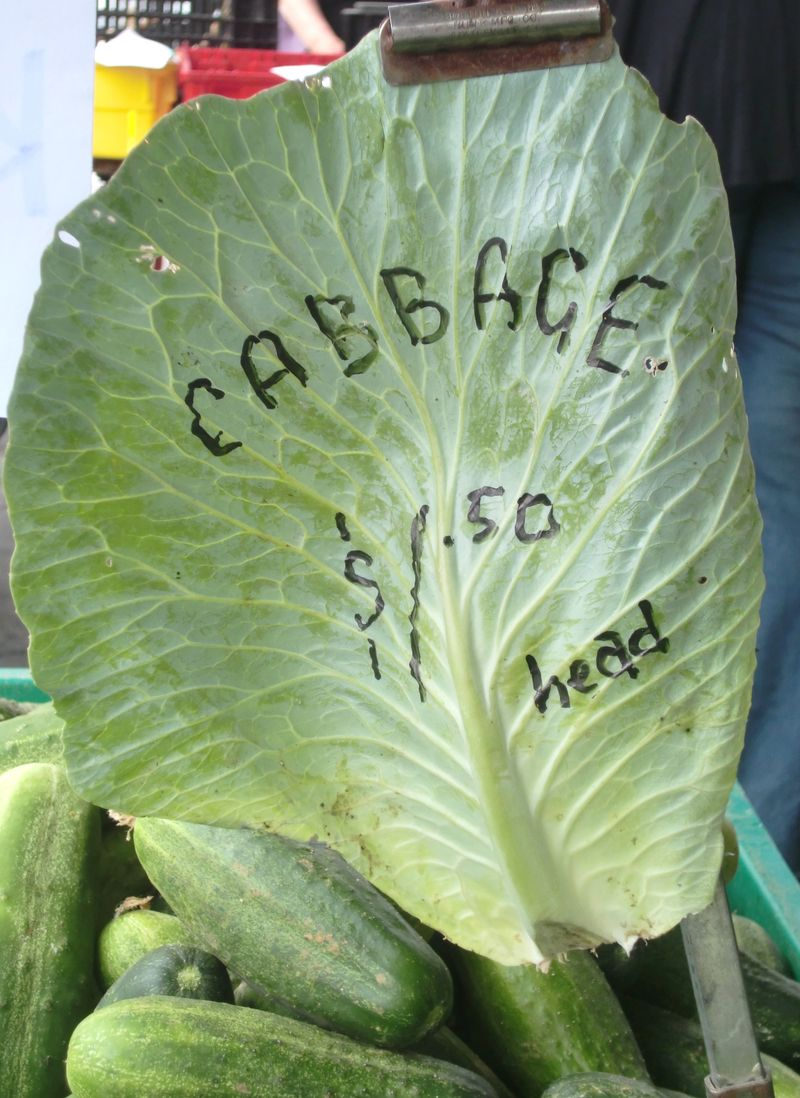 Cabbage sign