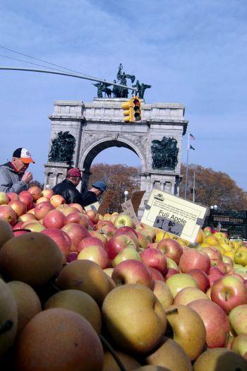 Apples GAP greenmarket 11-20