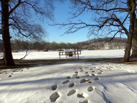 Across the lake 12-28
