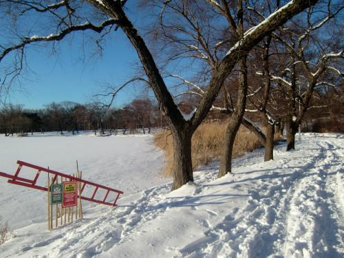 Lakeshore snow 1-13