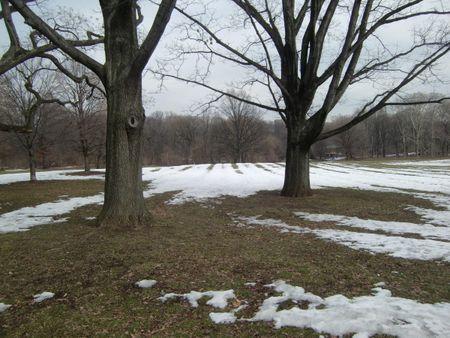 Nethermead snowmelt 2-24