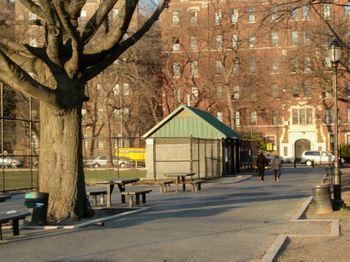 Parade grounds peaceful 3-24