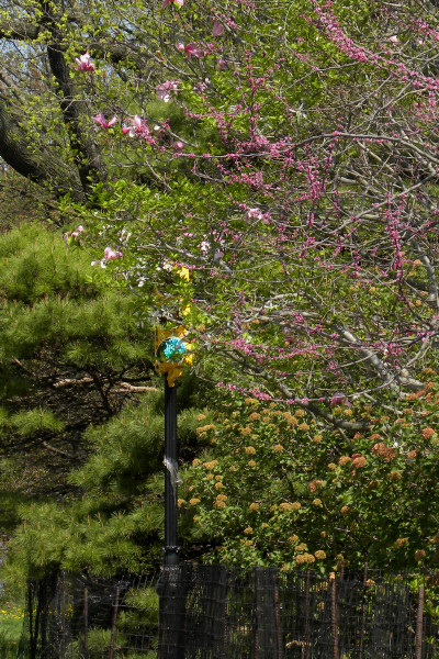 Greenlite spring 4-26