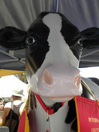 Fake cow 7-30-11