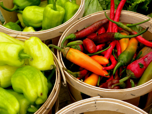 Red peppers 7-30-11
