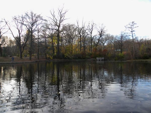 Lake sunset 11-25-11